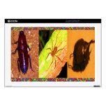 5* Costa Rica salvaje - arañas, insectos de las cu Calcomanías Para 43,2cm Portátiles