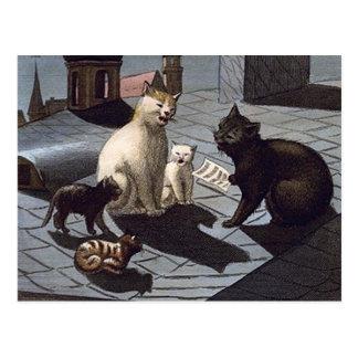 5 gatos con la hoja de música que cantan en un tej postal