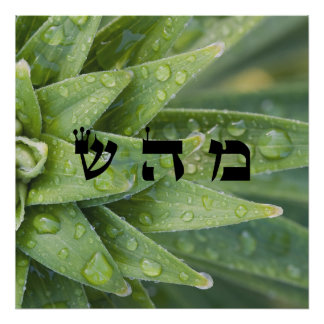 5 Healing - 72 Names of God Poster