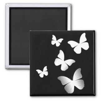 5 mariposas blancas imán cuadrado