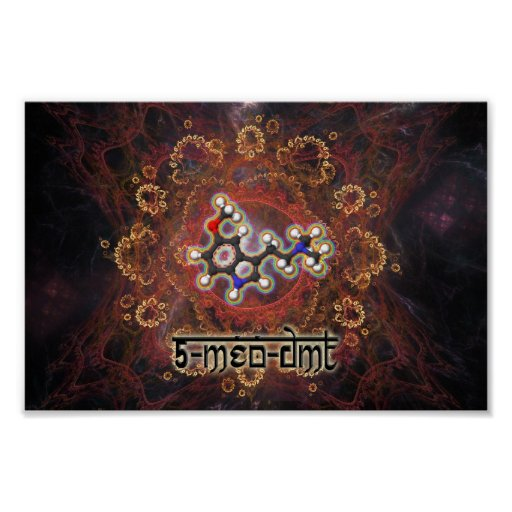 5-MeO-DMT Posters