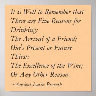 5 razones de la beber póster