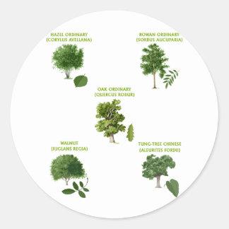 5 Trees Classic Round Sticker