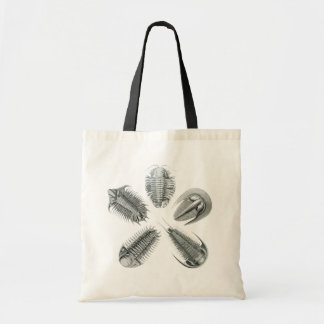 5 Trilobites Bag