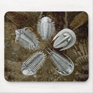 5 Trilobites Mousepad
