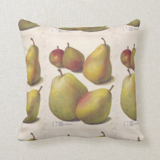 5 vintage pears illustrated cushion