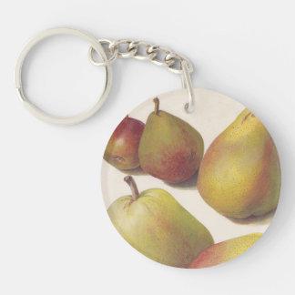 5 vintage pears illustrated keychain