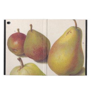 5 vintage pears illustrated powis iPad air 2 case