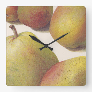 5 vintage pears illustrated square wall clock