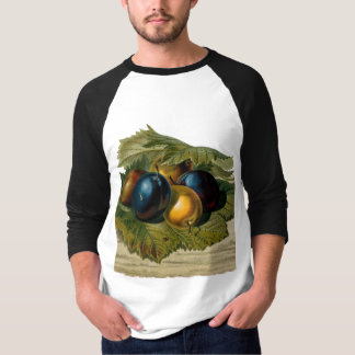 5 vintage plums painting T-Shirt
