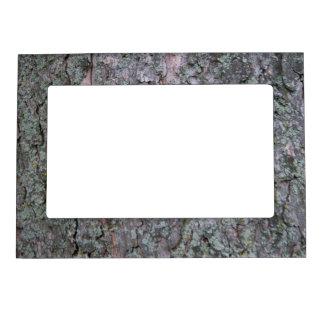 """5"""" x 7"""" Magnetic Frame (Pine Tree Bark) DSC01203"""