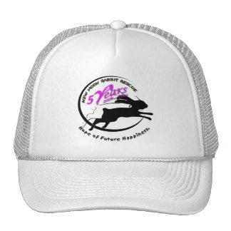 5th Anniversary Logo Mesh Hats