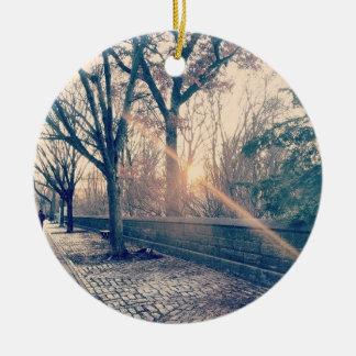 5th Avenue Central Park in Winter Ornament
