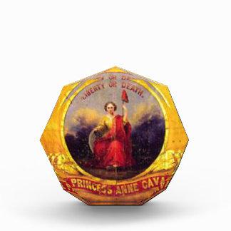 5th Virginia Cavalry  - The Princess Anne Cavalry Acrylic Award