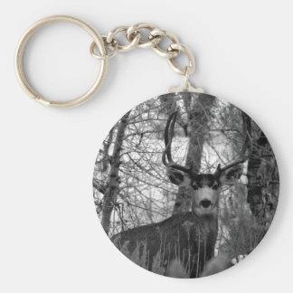 5x5 Mule Deer Basic Round Button Keychain