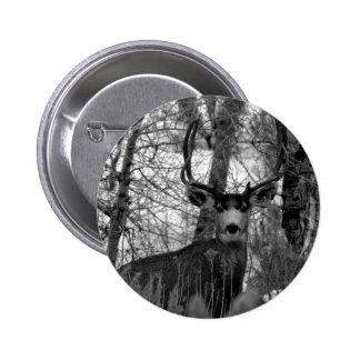 5x5 Mule Deer Pinback Button