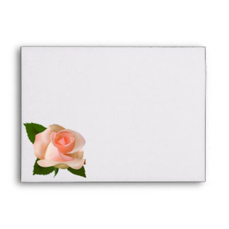 5x7  Envelope Option 4 Pink/Peach Rose with Leaves