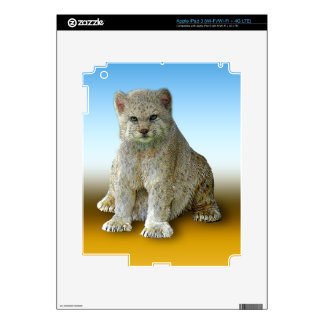 600 Pound Cat - Multiple Products iPad 3 Skin
