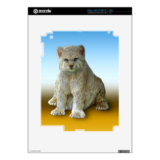 600 Pound Cat - Multiple Products Skin For iPad 2