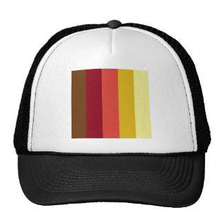 605_fall-palette STRIPES BROWN YELLOWS CREAMS PURP Hat