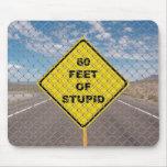 60 Feet of Stupid mouse pad