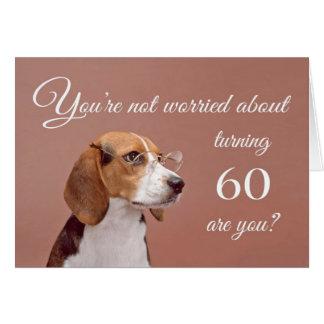 60.o cumpleaños feliz, beagle preocupante tarjeta de felicitación
