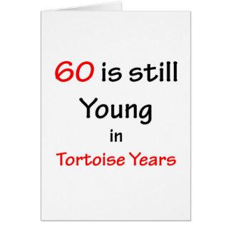 60 year  tortoise