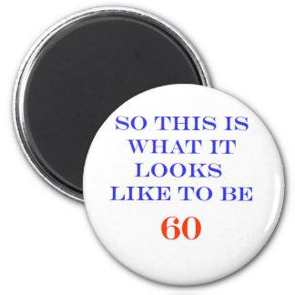 60 What It Looks Like Fridge Magnets