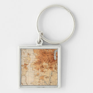 61 Density foreign born Key Chains