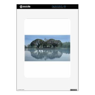 62-THAI16-0799-2054 iPad CALCOMANÍA