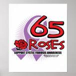 65 Roses 2 Print