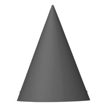 Professional Business #666666 Hex Code Web Color Dark Grey Gray Party Hat