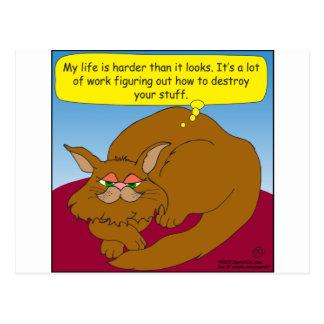 674 cat dreaming of destroying your stuff cartoon postcard