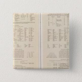 6870 Legend Finland, central Russia Pinback Button