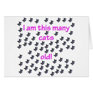 69 cabezas del gato viejas felicitaciones