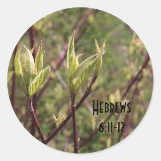 6:11 de los hebreos - 12 pegatinas de las hojas pegatina redonda
