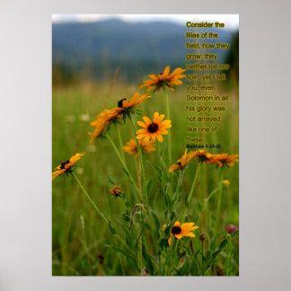 6:28 de Matthew - verso de 29 A de comodidad Posters