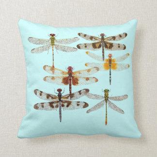 6 especies de almohada de la libélula