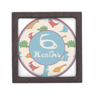 6 meses de jalón del dinosaurio caja de regalo de calidad