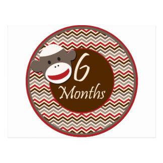 6 meses del calcetín de jalón del mono tarjetas postales