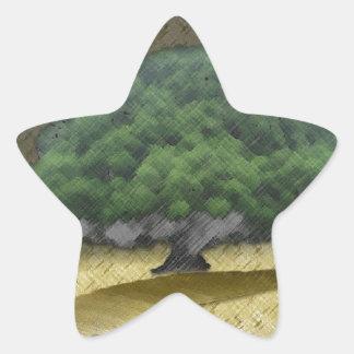 6 meses pegatina en forma de estrella