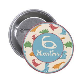 6 Months Dinosaur Milestone Pins