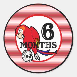 6 Months Nautical Pirate Milestone Classic Round Sticker