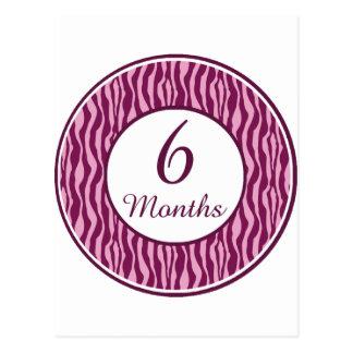 6 Months Rocker Girl Milestone Postcard
