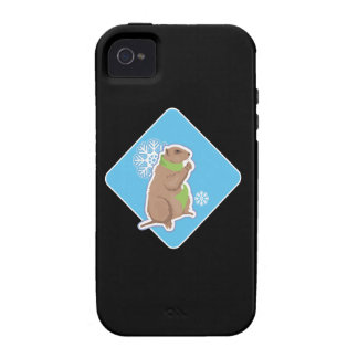6 More Weeks Case-Mate iPhone 4 Cases