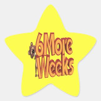 6 More Weeks Star Sticker
