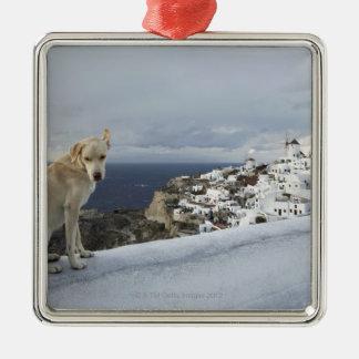 6-Nov Ornament