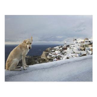 6-Nov Postcard