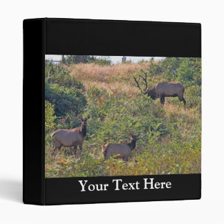 6 Point Bull Elk and Two Cows Wildlife Photo Binder