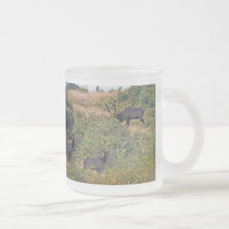 6 Point Bull Elk and Two Cows Wildlife Photo Frosted Glass Coffee Mug